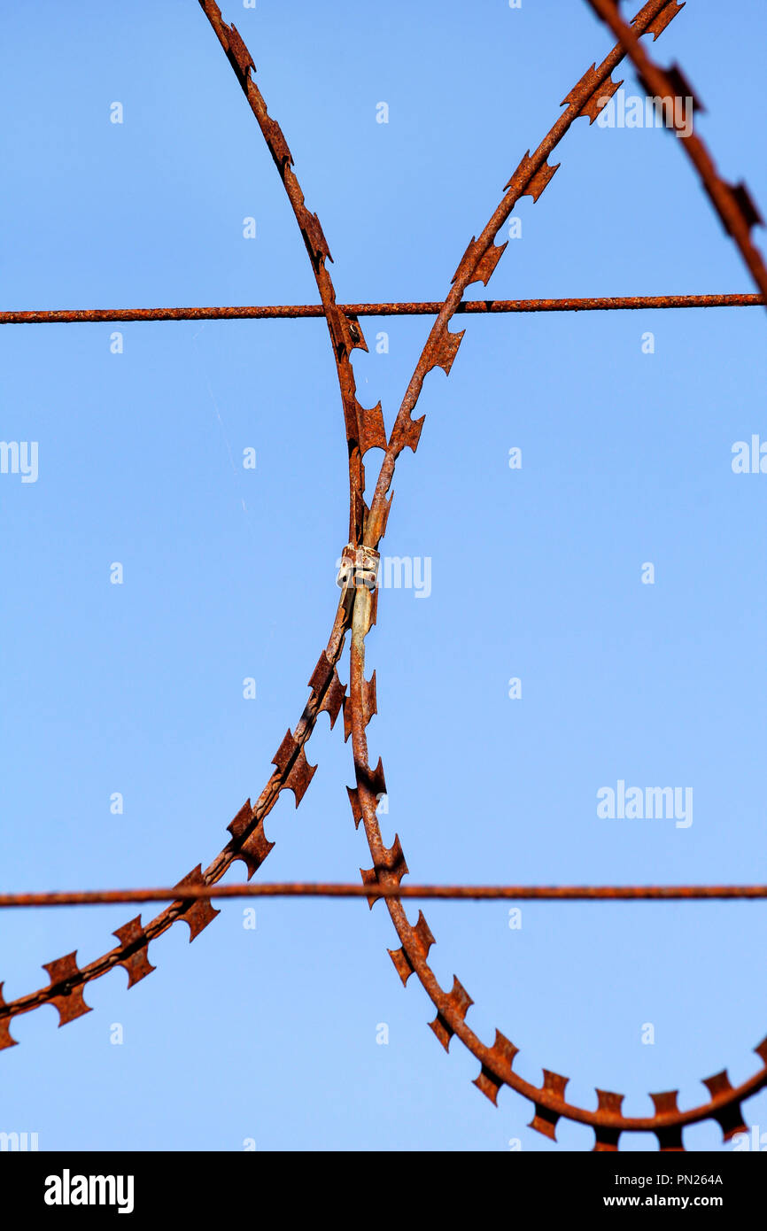 Part of the protective wire barbed fence. Security fence, A mesh barbed wire fence, close up. Barbed wire on a background of the blue sky. - Stock Image