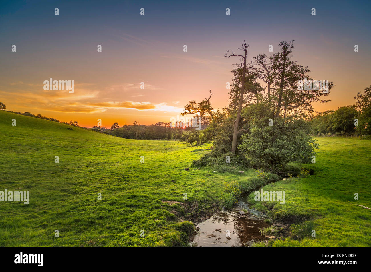 Sunset over Black Brook on the edge of Charnwood Forest. - Stock Image