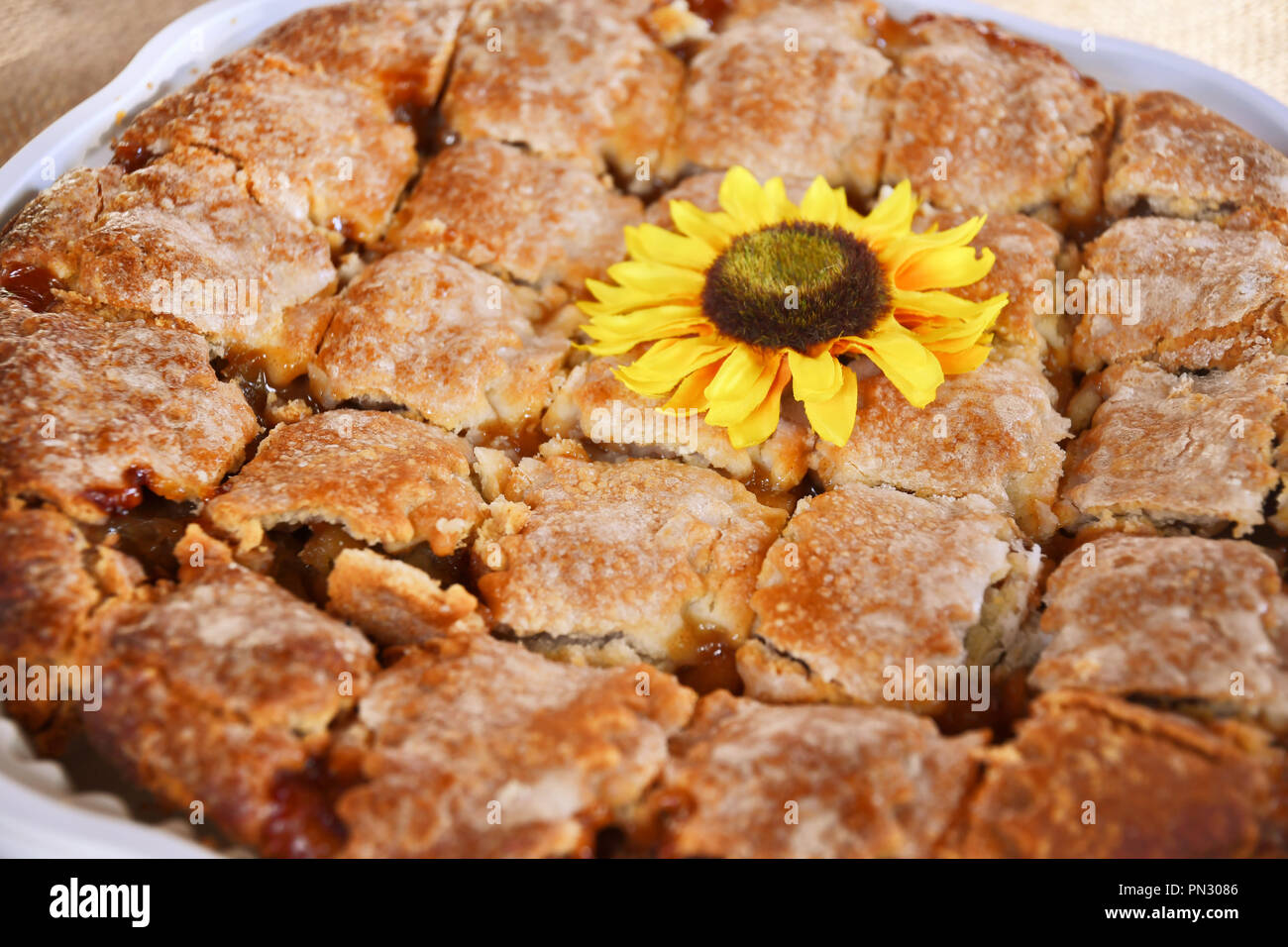 Apple pie with a faux sunflower cut up in a white tray Stock Photo