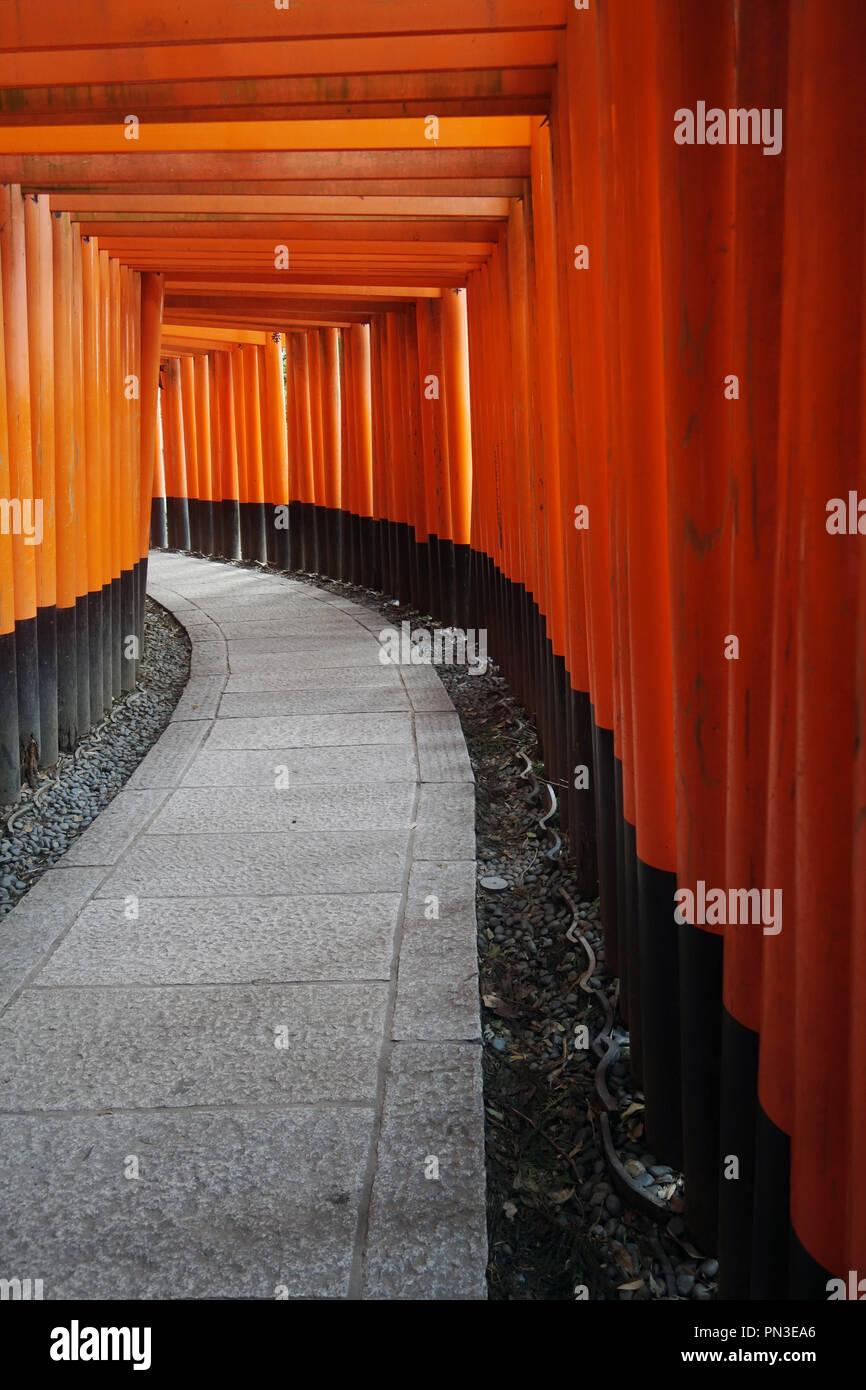 Red torii gates, Fushimi Inari shrine, Kyoto, Japan. No PR Stock Photo