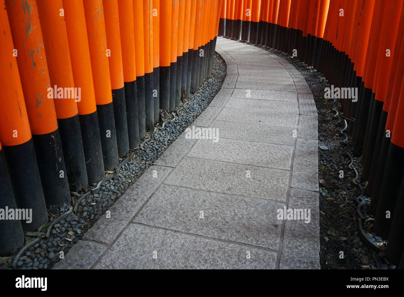 Path between red torii gates, Fushimi Inari shrine, Kyoto, Japan. No PR Stock Photo