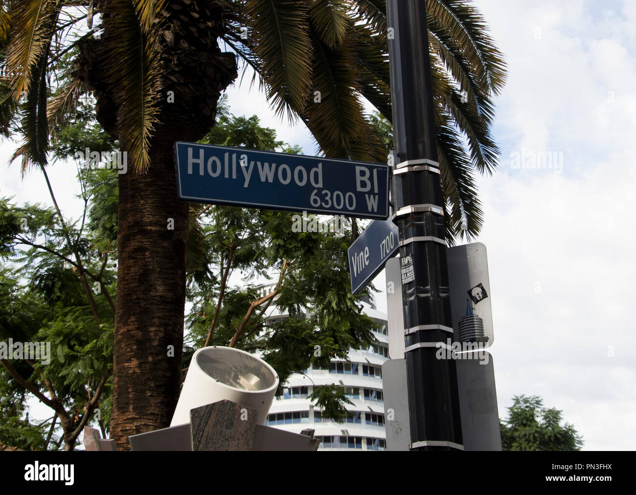 Hollywood boulevard street sign with palm trees in the background. - Stock Image