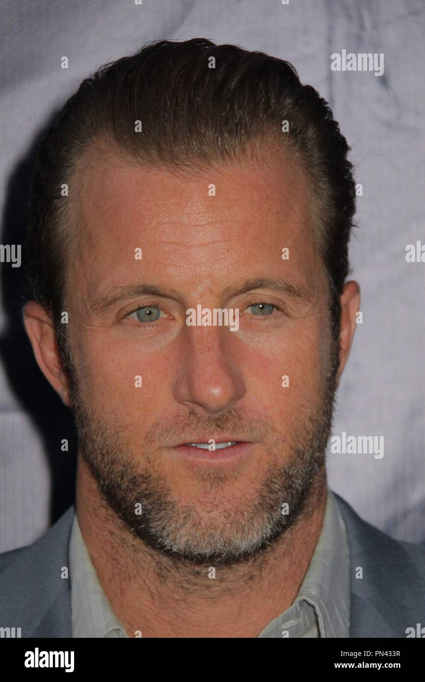 scott caan 08/10/2015 cbs, the cw and showtime 2015 tca