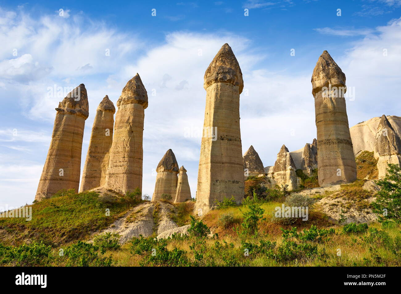Fairy Chimneys rock formation in Love Valley, Cappadocia,  Goreme National Park, Anatolia, Turkey - Stock Image