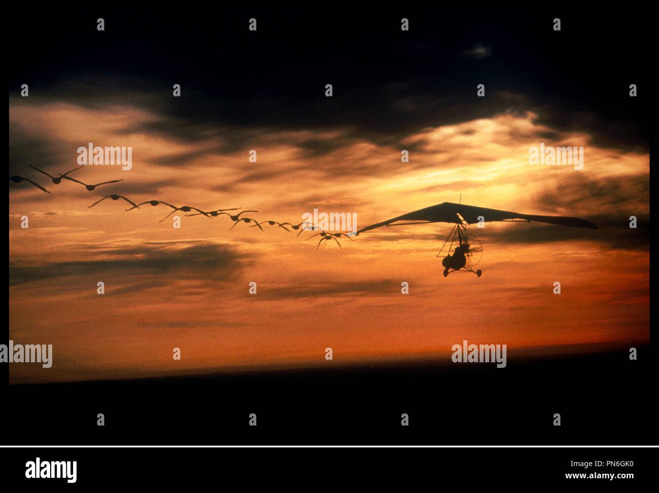 Prod DB © Columbia Pictures / DR L'ENVOLEE SAUVAGE (FLY AWAY HOME) de Carroll Ballard 1996 USA ulm, avion, voler, clichŽ, carte postale - Stock Image