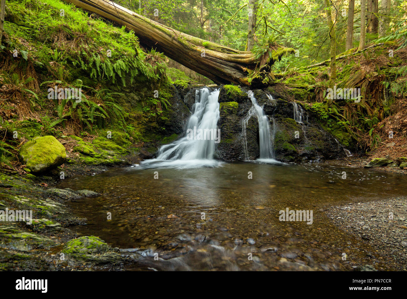 Rustic Falls on Orcas Island in the San Juan Islands, Washington state Stock Photo