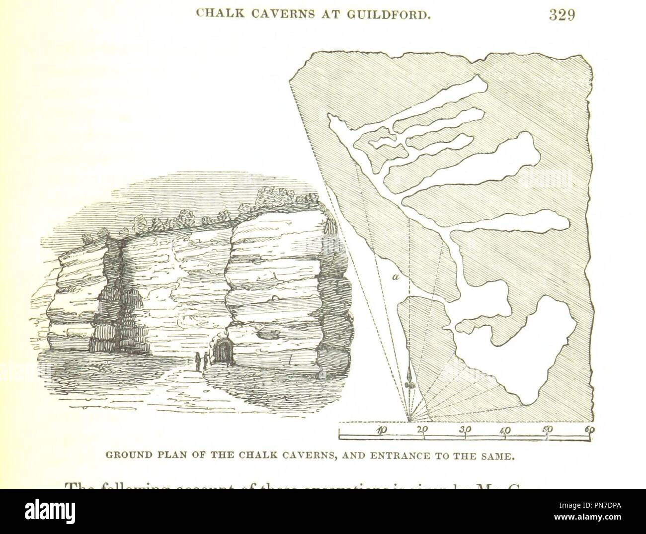 Image  from page 365 of '[A Topographical History of Surrey by E. W. Brayley . assisted by John Britton . and E. W. Brayley, jun. . The geological section by Gideon Mantell. (The illustrative department under the super0006. - Stock Image