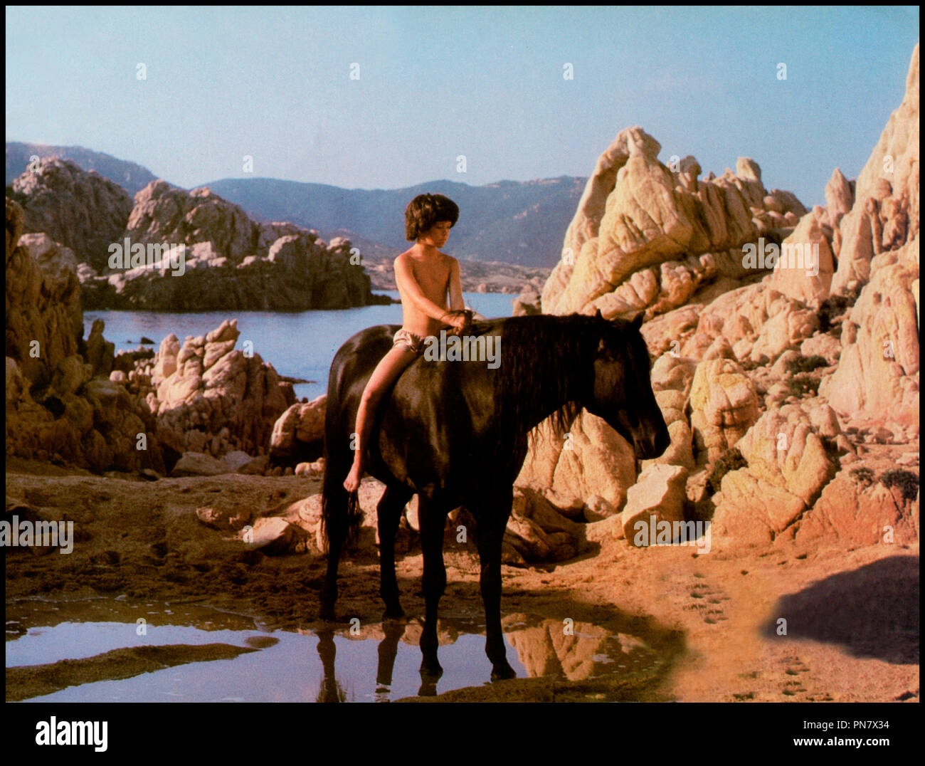 Prod DB © Omni Zoetrope / DR L'ETALON NOIR (THE BLACK STALLION) de Carroll Ballard 1979 USA avec Kelly Reno cheval, amitie, homme animal d'apres le roman de Walter Farley Stock Photo