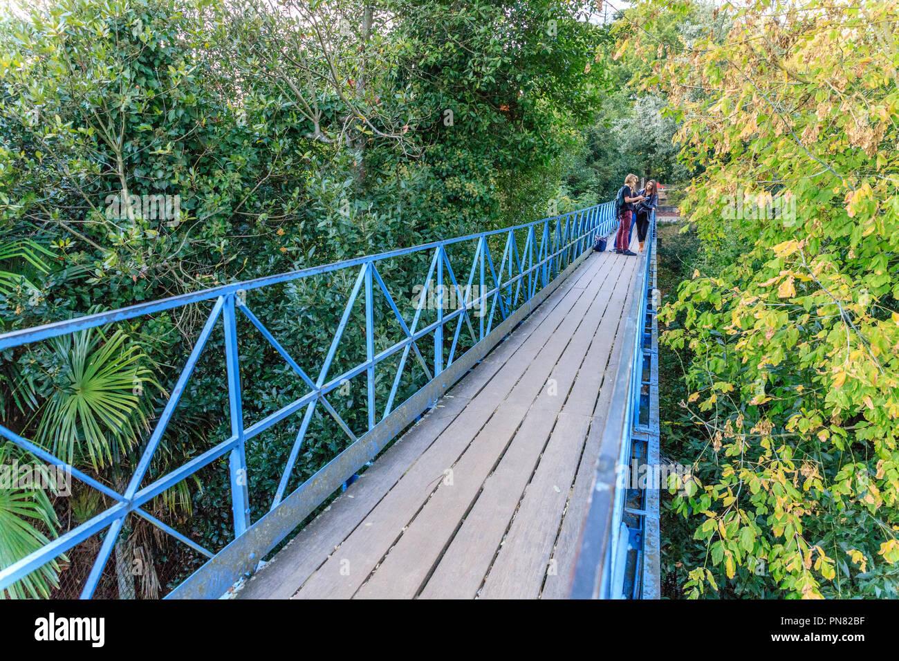 France, Gironde, Cote d'Argent, Parc naturel marin du bassin d'Arcachon (Arcachon Bay Marine Natural Park), Arcachon, Ville d'Hiver district, Saint Pa - Stock Image