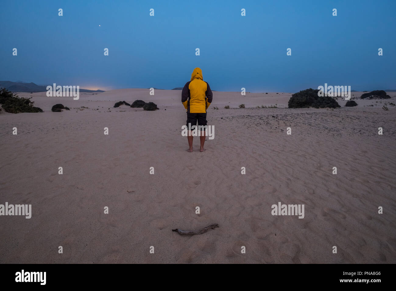 single man with yello jacket wait and stand in the middle of the desert of corralejo fuerteventura by night in the evening. cold and enjoying the natu - Stock Image