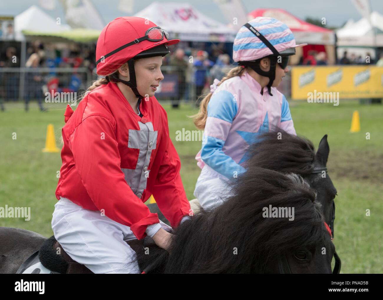 Cheshire Country Fair 2018 - Shetland Pony Racing Stock Photo