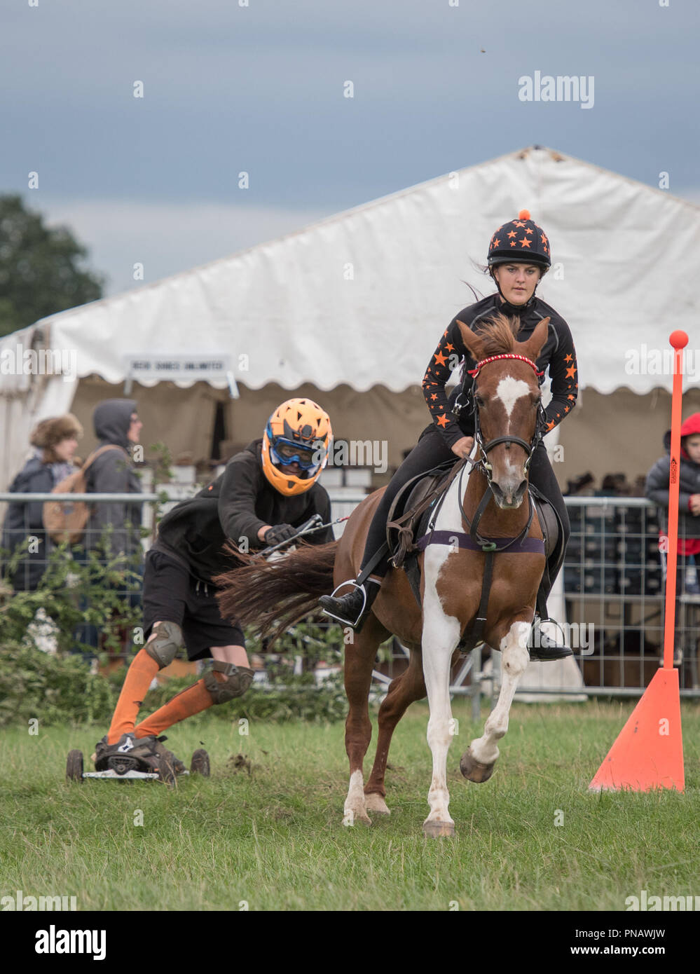 Cheshire Game & Country Fair 2018 - Horse Boarding Stock Photo