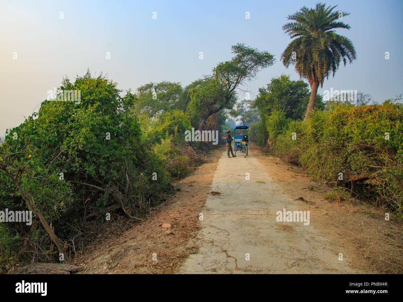 Bharatpur Bird Sanctuary (Rajasthan - India) Stock Photo