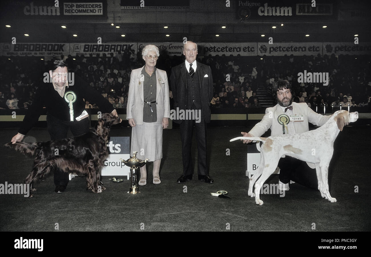 Crufts dog show, Earls Court, London, England. 1989 - Stock Image