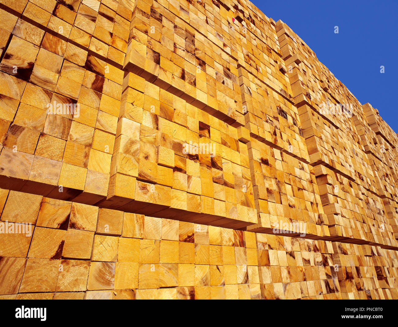 lumber stacked ready for export, North America, Canada, British Columbia, Vancouver Island, Nanaimo - Stock Image