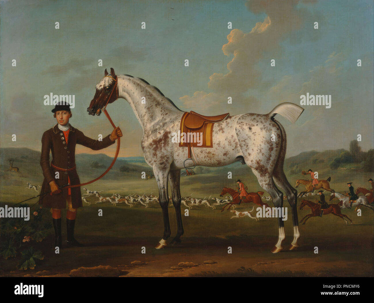 Scipio, a spotted hunter, the property of Colonel Roche. Date/Period: Ca. 1750. Painting. Oil on canvas. Height: 991 mm (39.01 in); Width: 1,340 mm (52.75 in). Author: Thomas Spencer. Stock Photo