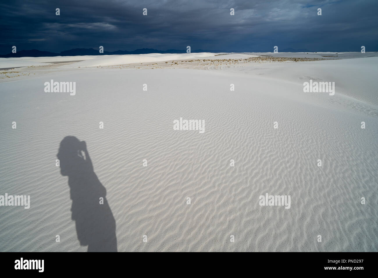 Shadow cast on the gypsum sand of a photographer taking pictures in White Sands New Mexico National Monument - Stock Image