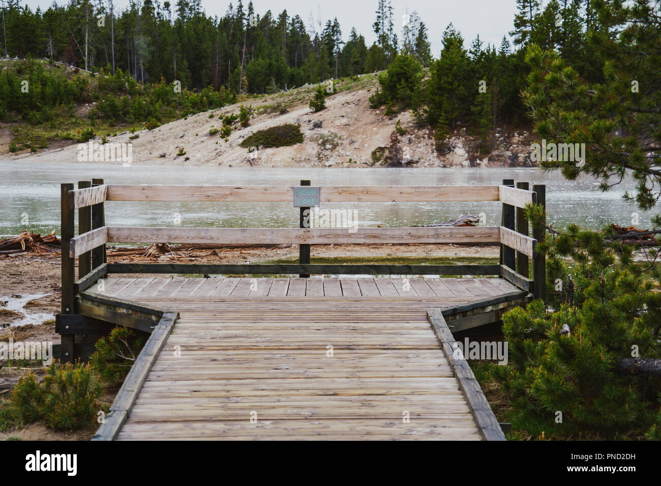 Boardwalk and viewing platform at Sour Lake, a geothermal feature in Yellowstone National Park - Stock Image