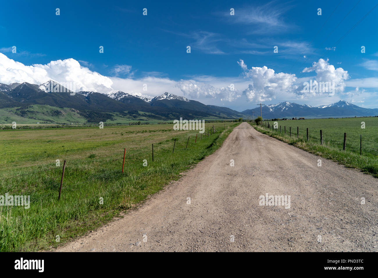 Gravel dirt road with power lines leading into the Absaroka Mountains near Livingston Montana in Paradise Valley. Lush green vegetation and clouds - Stock Image