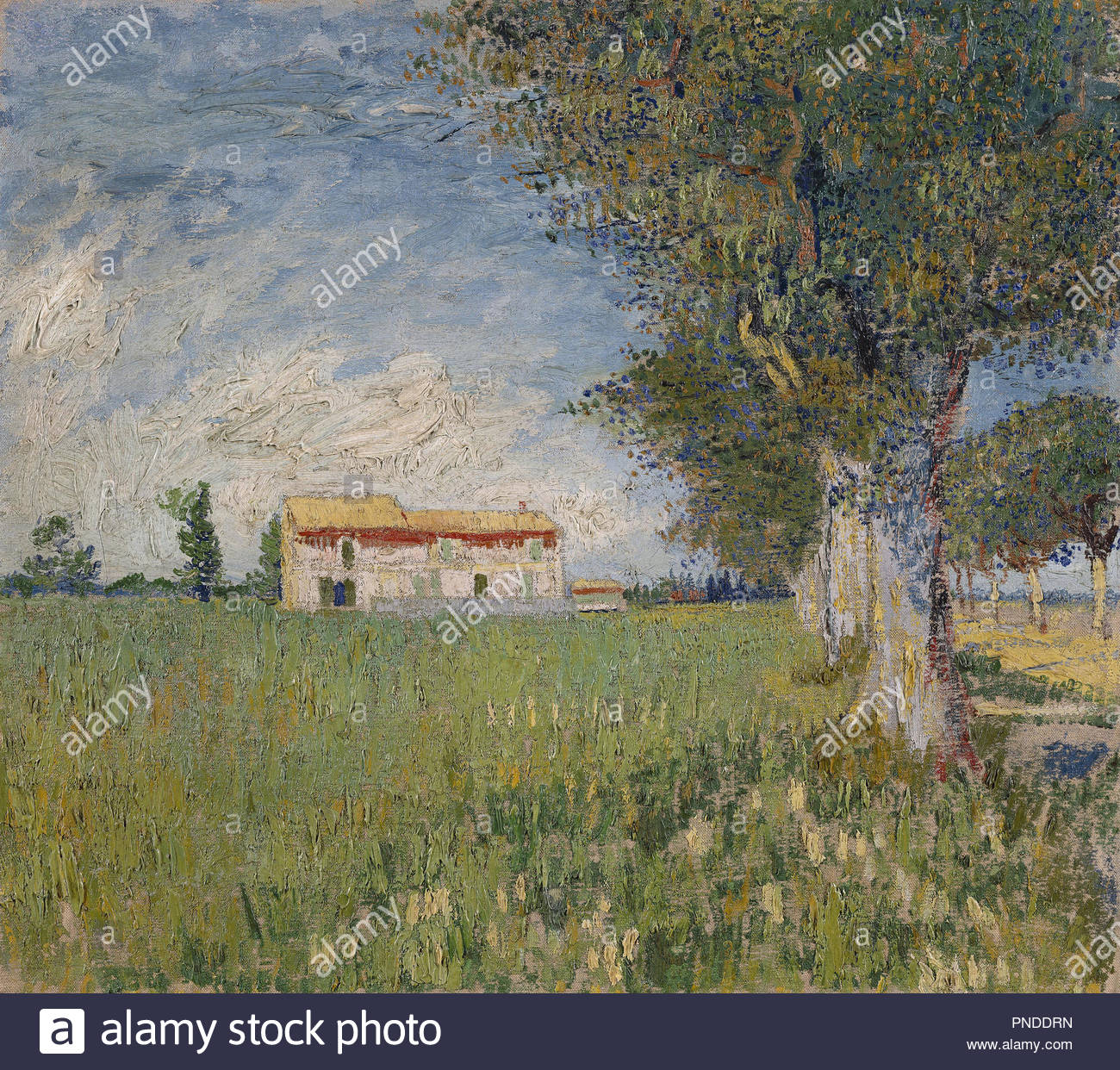 Boerderij in een korenveld / Farmhouse in a wheat field. Date/Period: 1888. Painting. Oil on canvas. Height: 45 cm (17.7 in); Width: 50 cm (19.6 in). Author: VINCENT VAN GOGH. VAN GOGH, VINCENT. - Stock Image