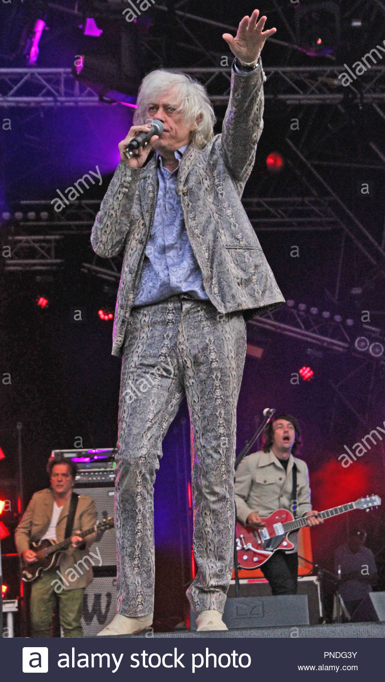 Bob Geldof at Carfest North 2015 at Oulton Park, Little Budworth, Cheshire on Friday 31 July 2015 - Stock Image