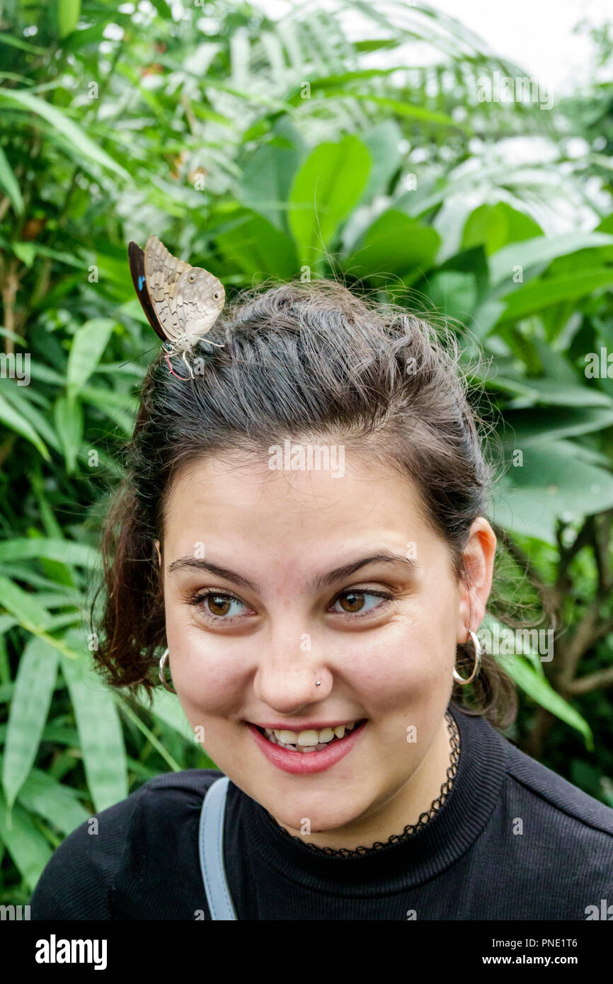 London England Great Britain United Kingdom KensingtonmNatural History Museum Sensational Butterflies exhibition tropical habitat girl teen insect perched on hair - Stock Image