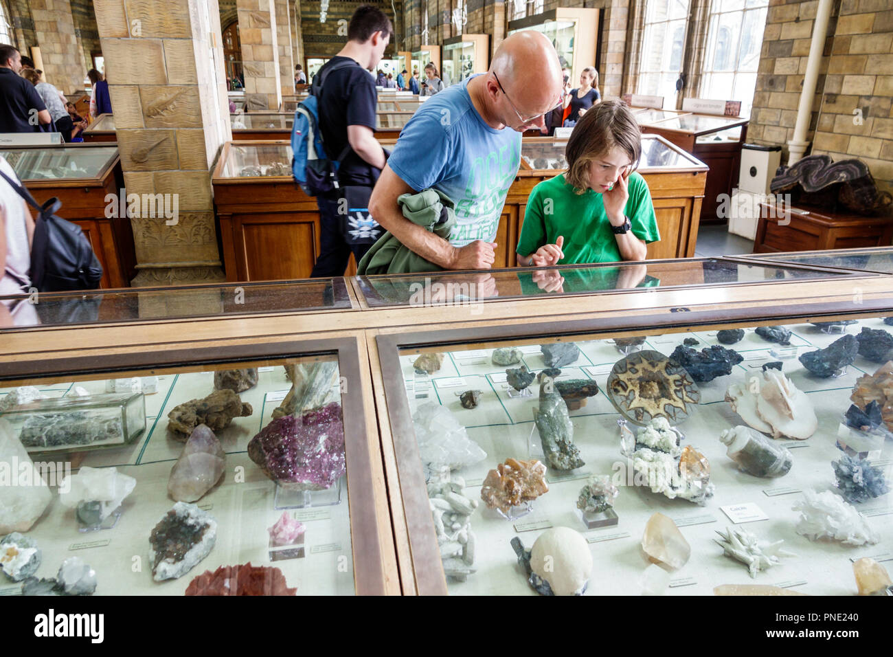 London England Great Britain United Kingdom Kensington Natural History Museum inside minerals exhibit gallery man boy tween teen father son looking oa - Stock Image
