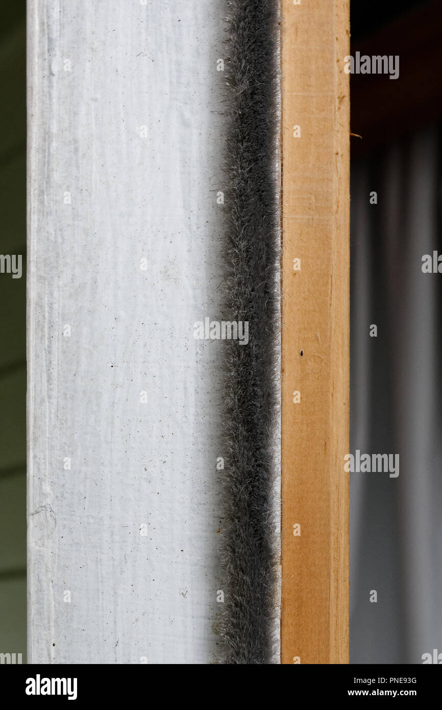 Prevent chilly draughts with a stick on furry draught excluder.  This can be stuck down badly fitting doors or windows to prevent draughts. - Stock Image