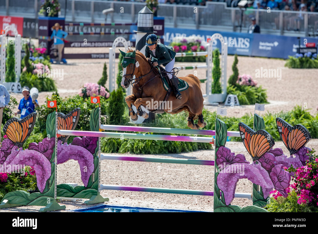 20 September 2018, US, Tryon: Equestrian Sport, World Equestrian Games· 2018, 2nd team qualification, 1st round. Dalma Malhas (KSA) with Toscanini Malpic in action. Photo: Stefan Lafrentz/dpa - Stock Image