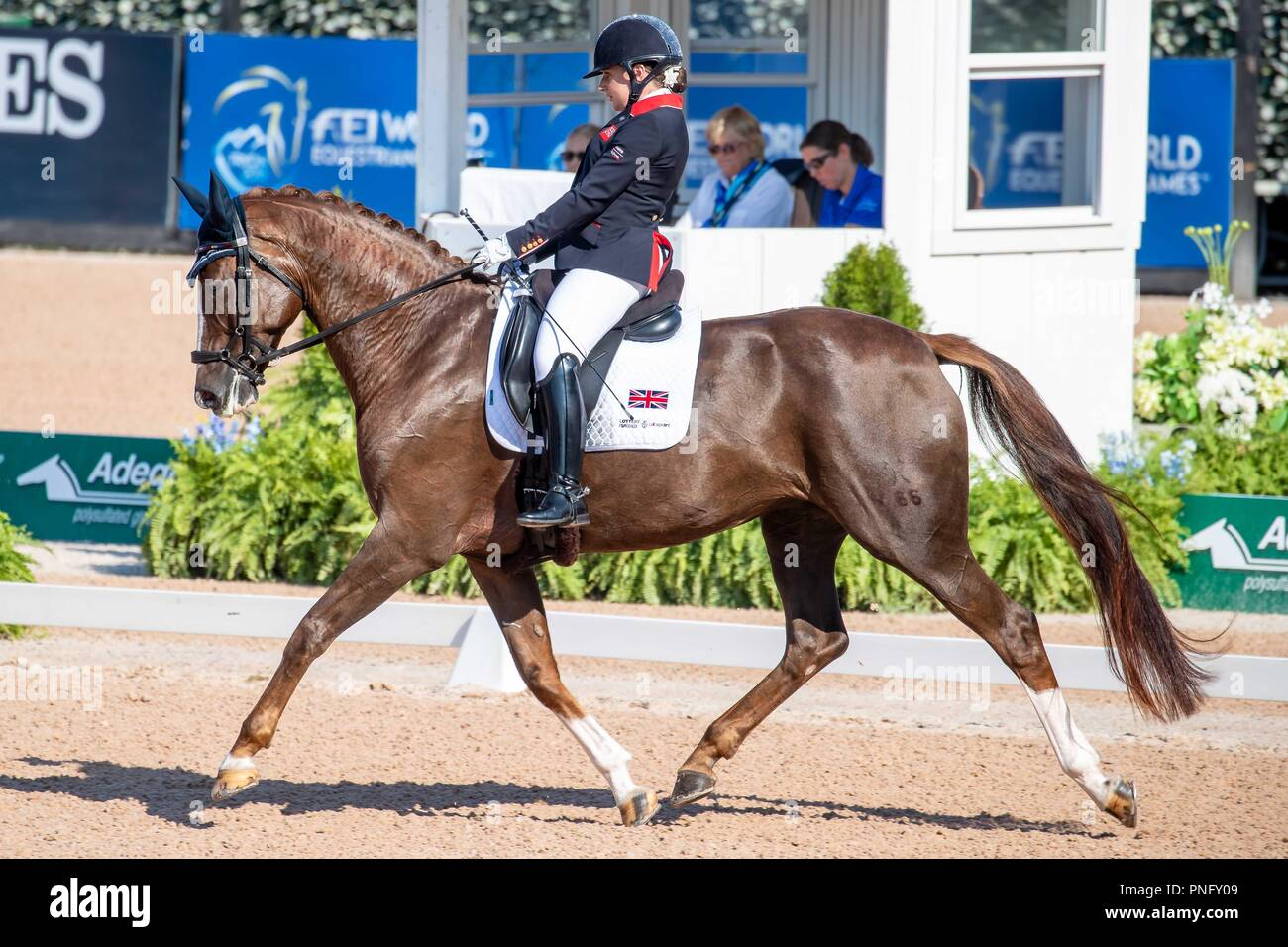 Natasha Baker. Mount St John Diva Dannebrog. GBR. Team Test Grade III Para Dressage.Day 10. World Equestrian Games. WEG 2018 Tryon. North Carolina. USA. 21/09/2018. - Stock Image