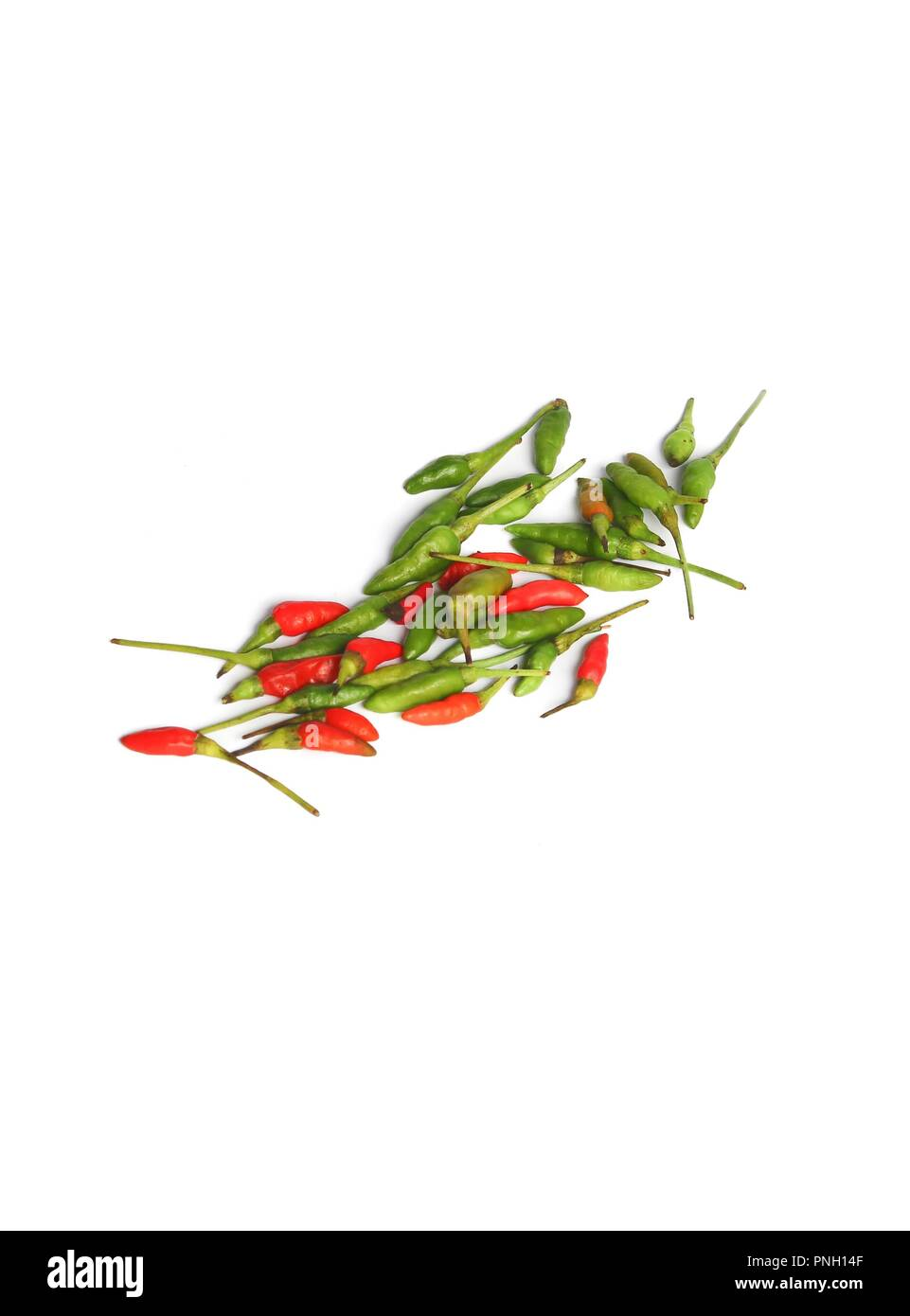 hot chili  savory  paprika fresh on a white background - Stock Image