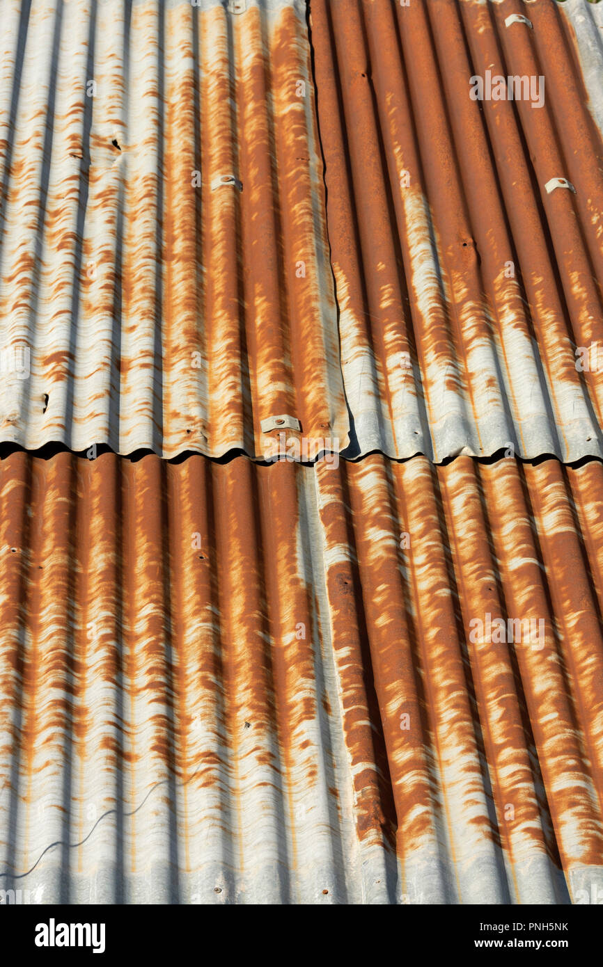 Corrugated sheet on a roof, Auvergne, France - Stock Image