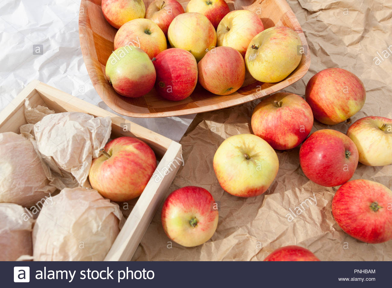 Apples being sorted for storing throughout the winter - Stock Image