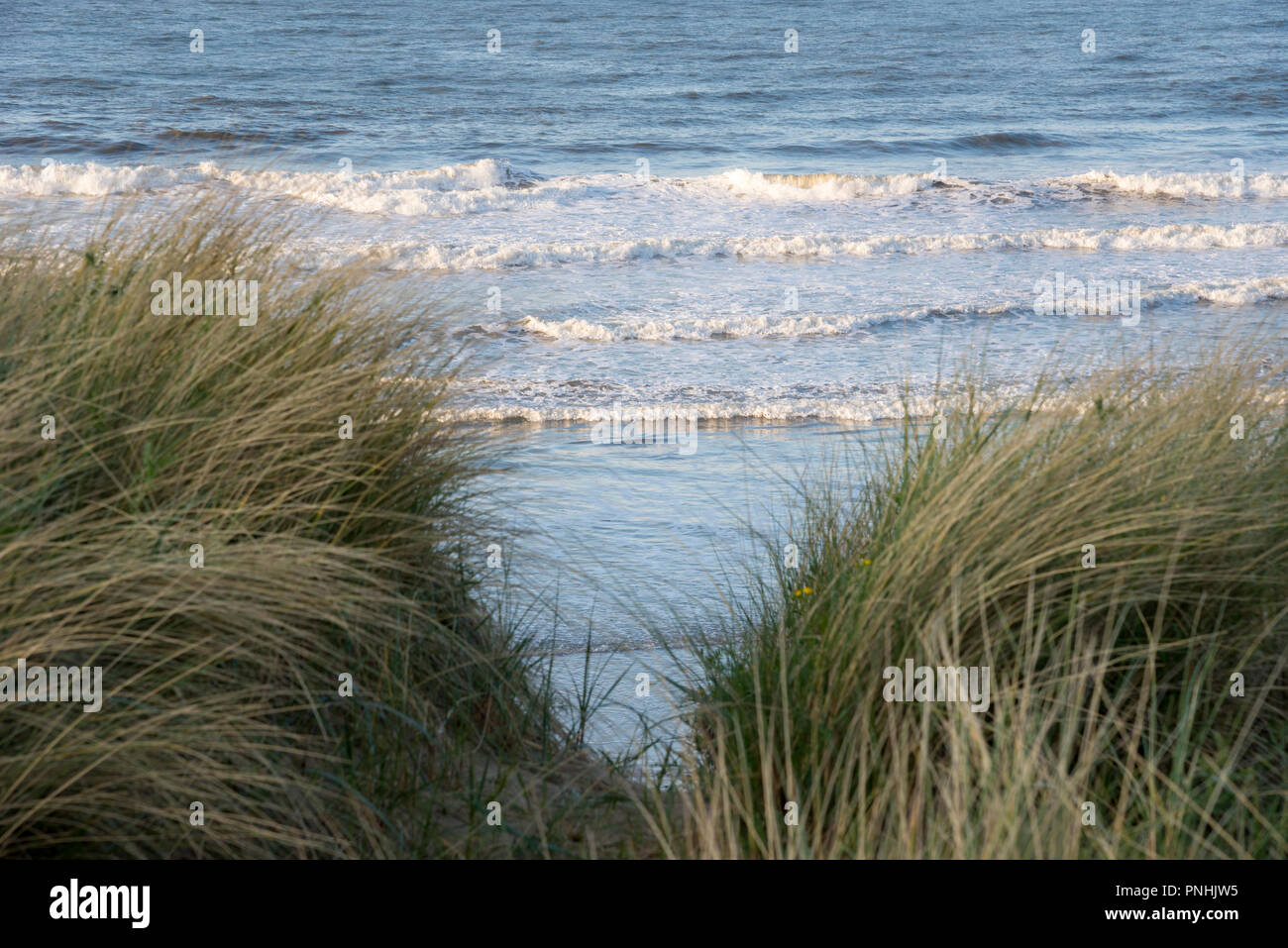 View of the sea through dune grasses at Cattersty sands, Skinningrove, North Yorkshire, England. - Stock Image
