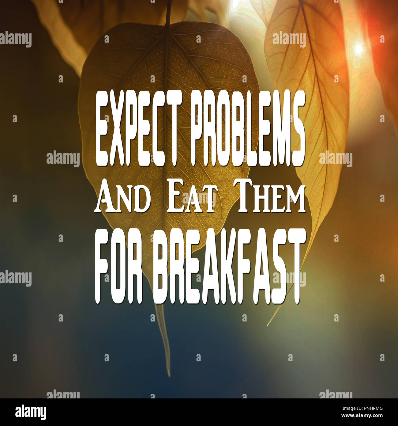 Inspirational Quotes Expect problems and eat them for breakfast, positive, motivational - Stock Image