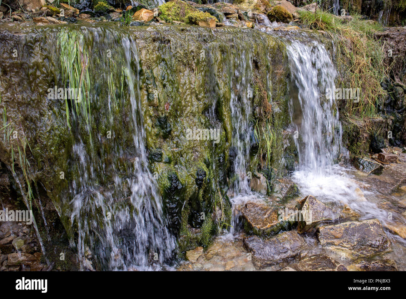 Millennial cold forest creeks, little waterfalls over the rocks with slippery moss Stock Photo