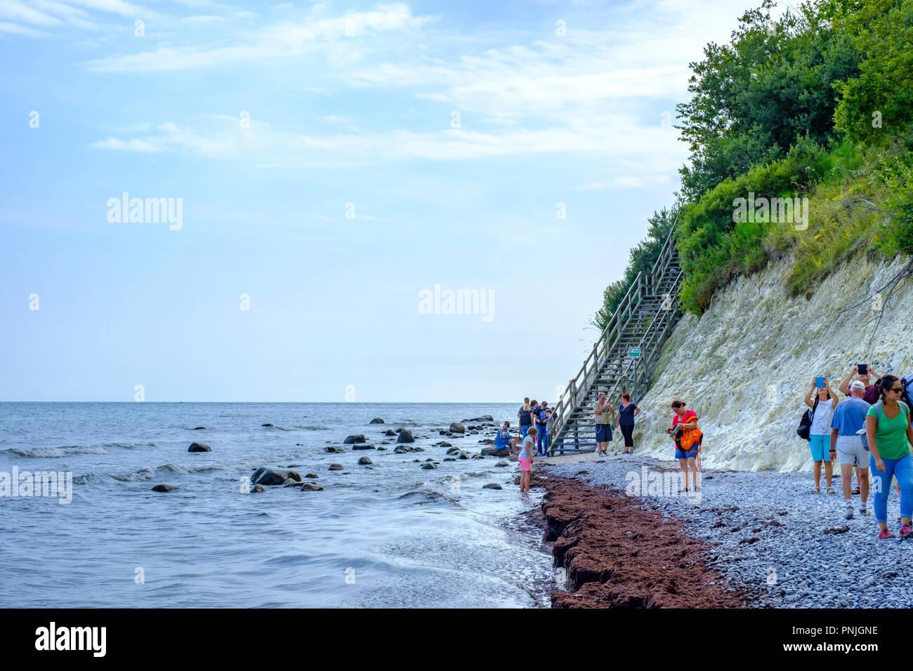Moens Klint, the white cliffs of Moen, Moen Island, Denmark, Scandinavia, Europe. - Stock Image
