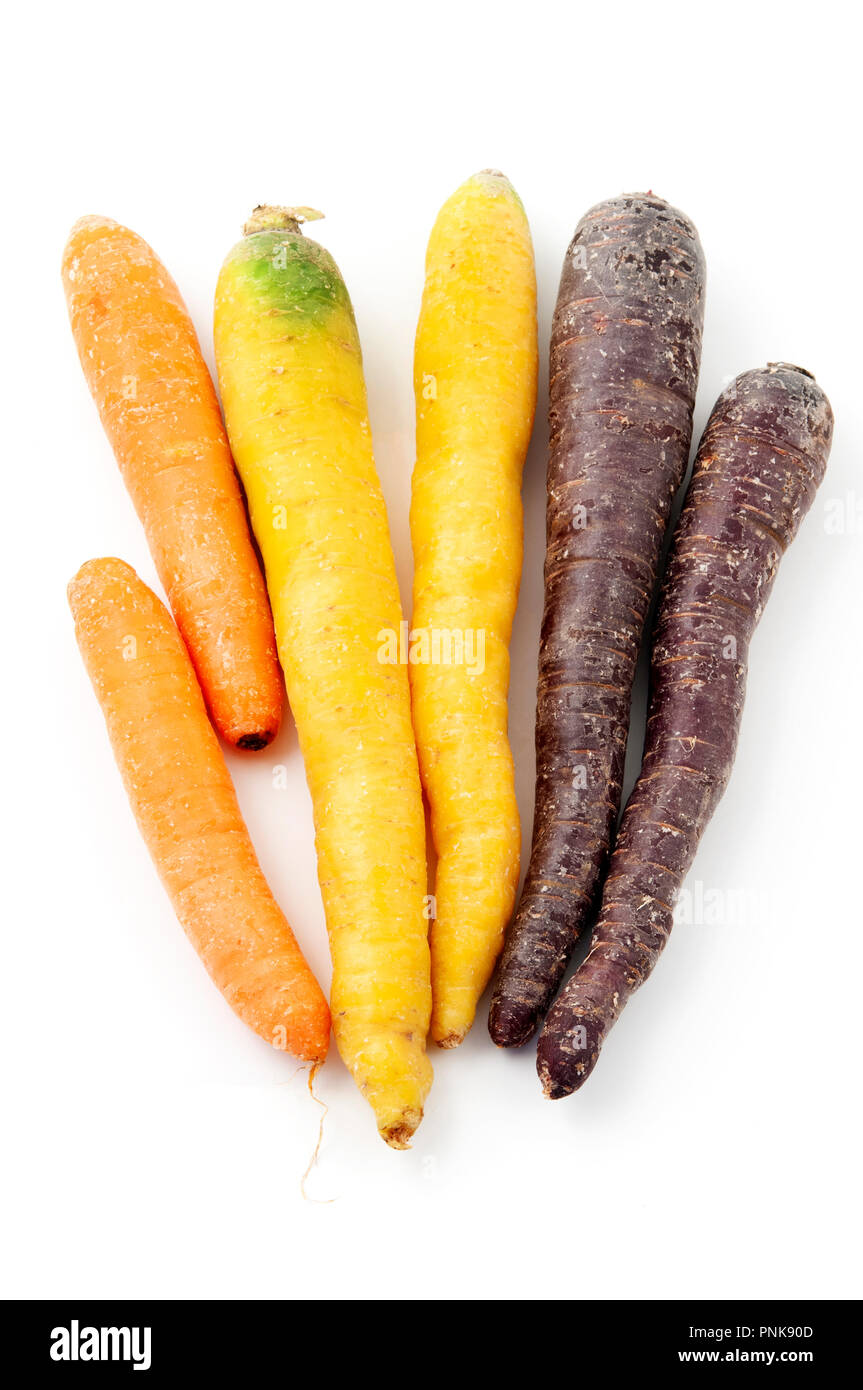 Mixed carrots on a white background - Stock Image