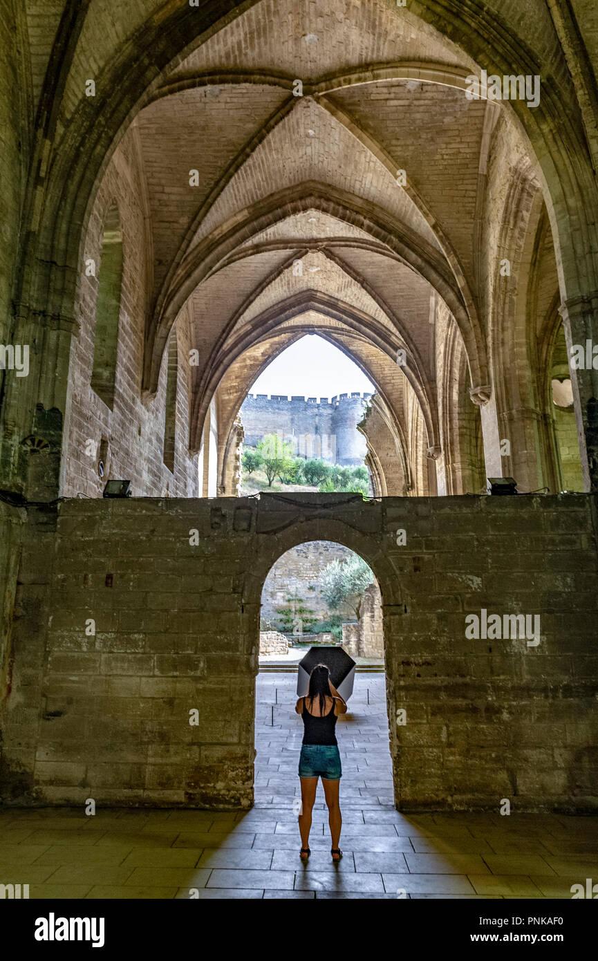 France. Gard (30). Villeneuve-Les-Avignon. Chartreuse Notre-Dame-du-Val-de-Bénédiction. The church - Stock Image