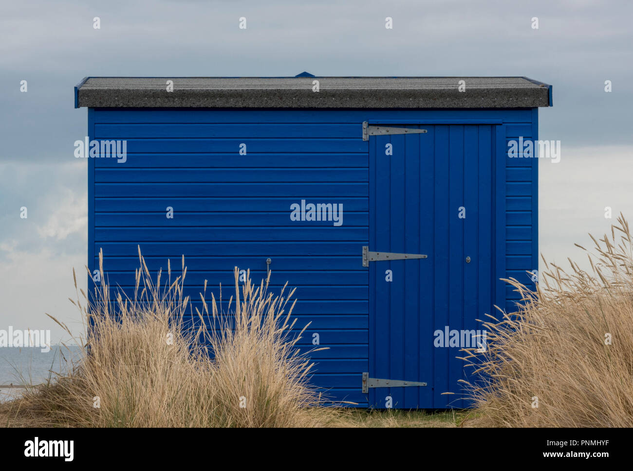 a blue painted beach hut in the sand dunes and maram grass at st Helens, bembridge, isle of wight - Stock Image