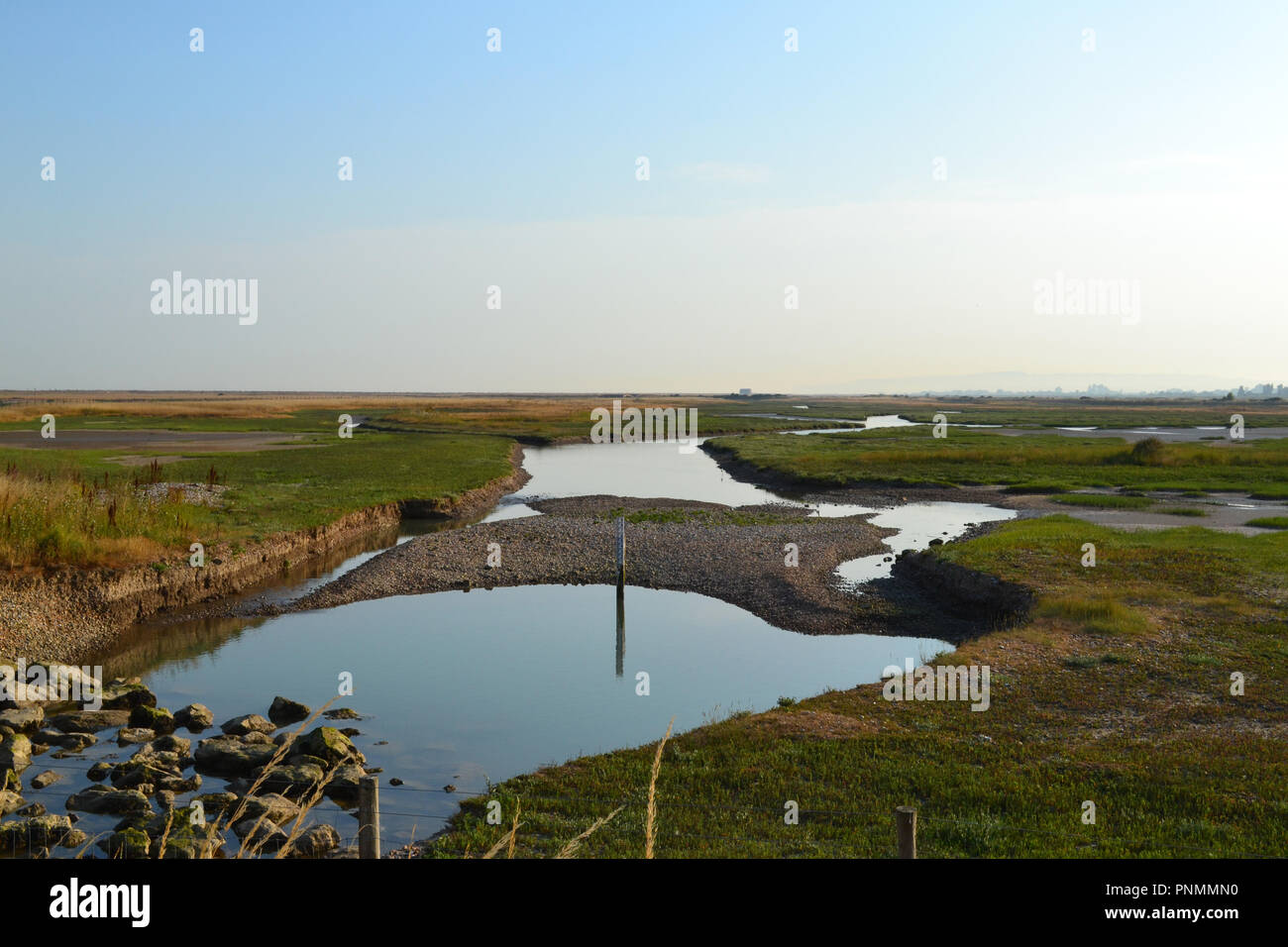 Drainage channels and lagoons in salt marsh at Rye Harbour, East Sussex, England, UK, late afternoon on hot summer's day - Stock Image
