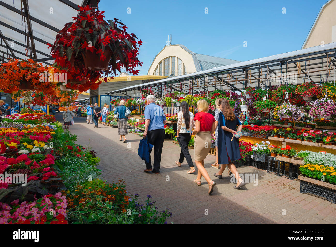 Riga Central Market, view in summer of Latvian people walking through the flower market in the Central Market area of Riga, Latvia. - Stock Image