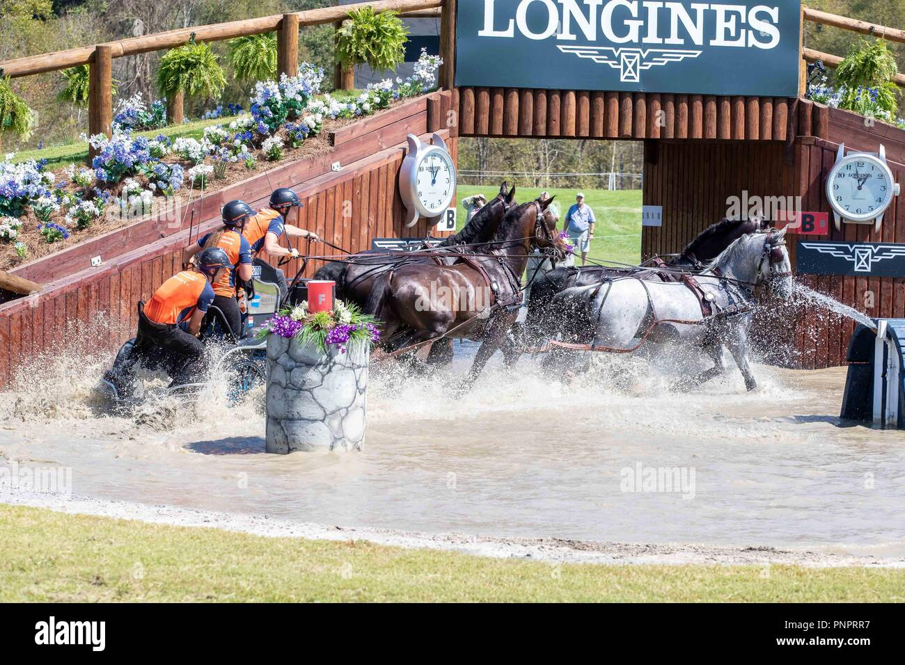 Tryon, USA. 22nd September 2018. Bram Chardon. NED. FEI World Team and Individual Driving Championships. AUS. Day 11. World Equestrian Games. WEG 2018 Tryon. North Carolina. USA. 22/09/2018. Credit: Sport In Pictures/Alamy Live News Stock Photo