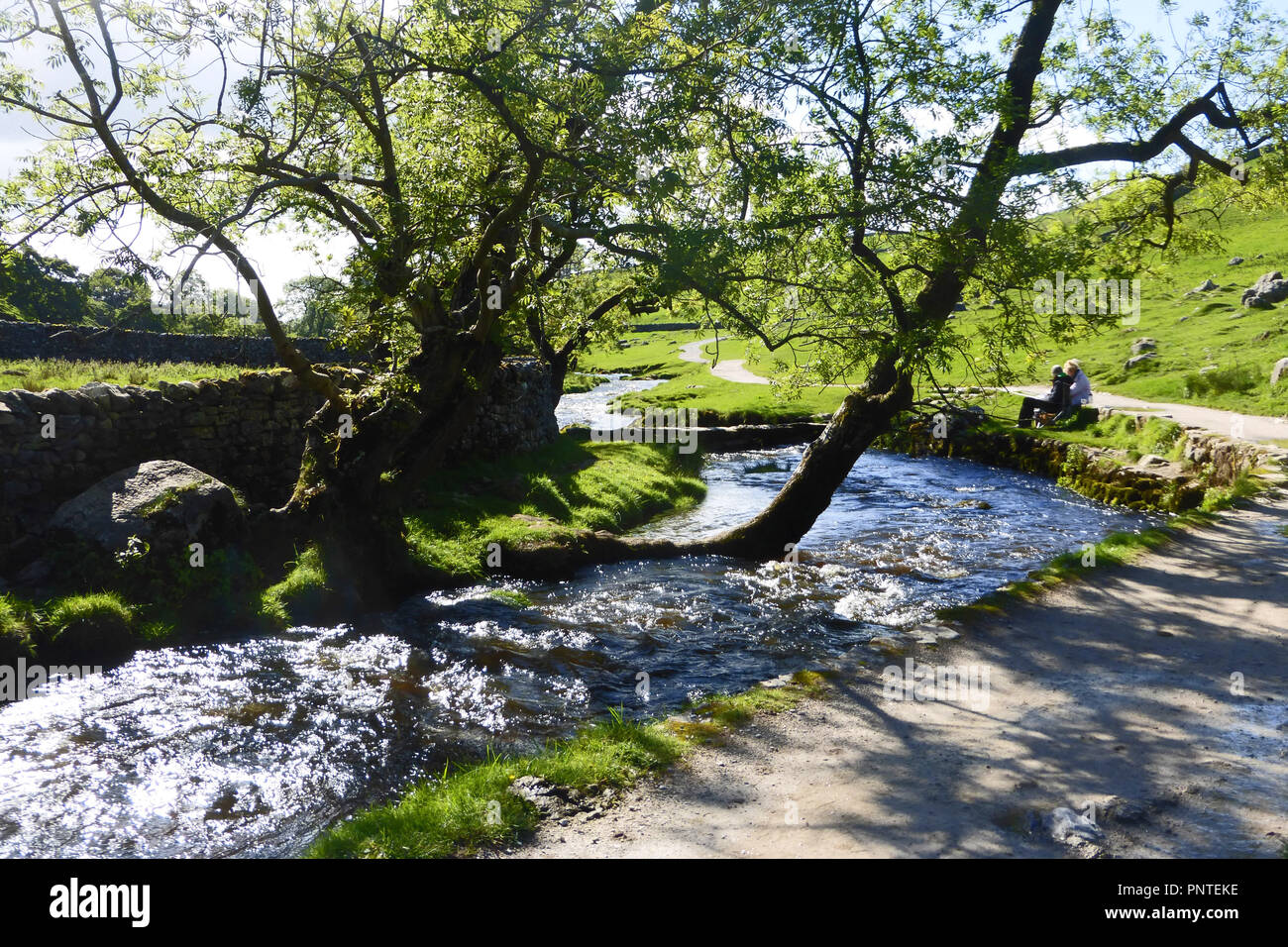 Malham Beck which flows from Malham Cove in the Yorkshire Dales, England - Stock Image