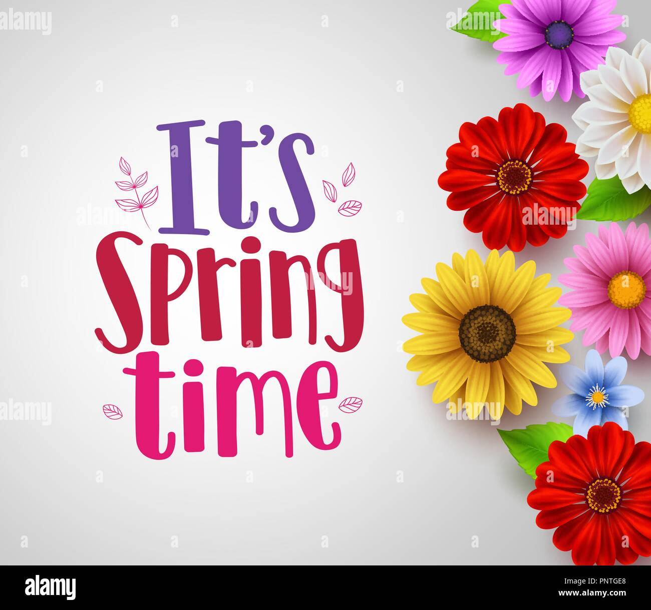 it s spring time text in empty white background vector template with