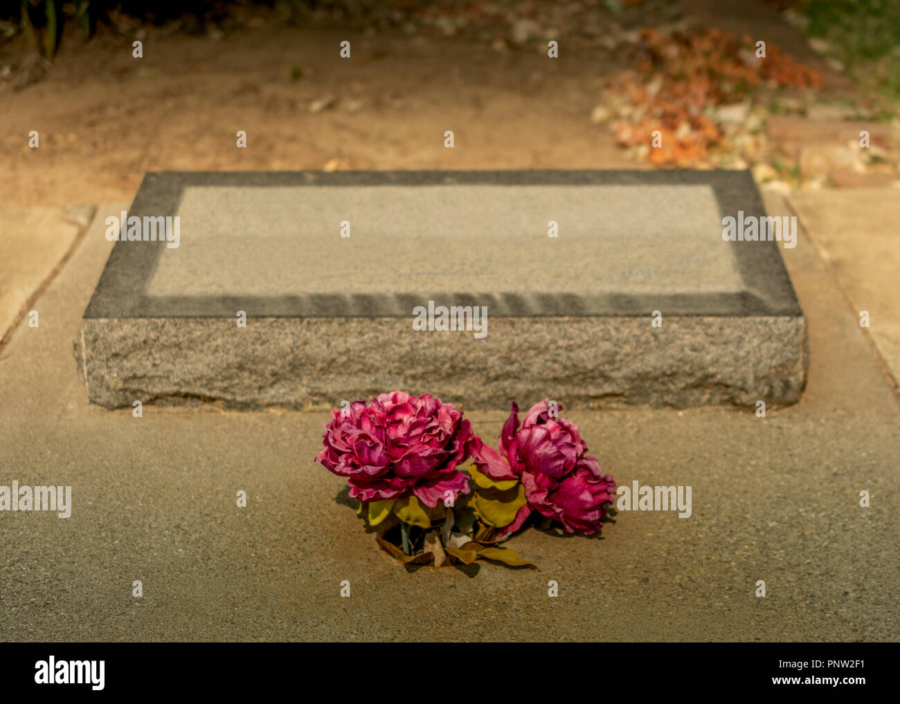 Let Be Creepy Stock Photos & Let Be Creepy Stock Images - Alamy