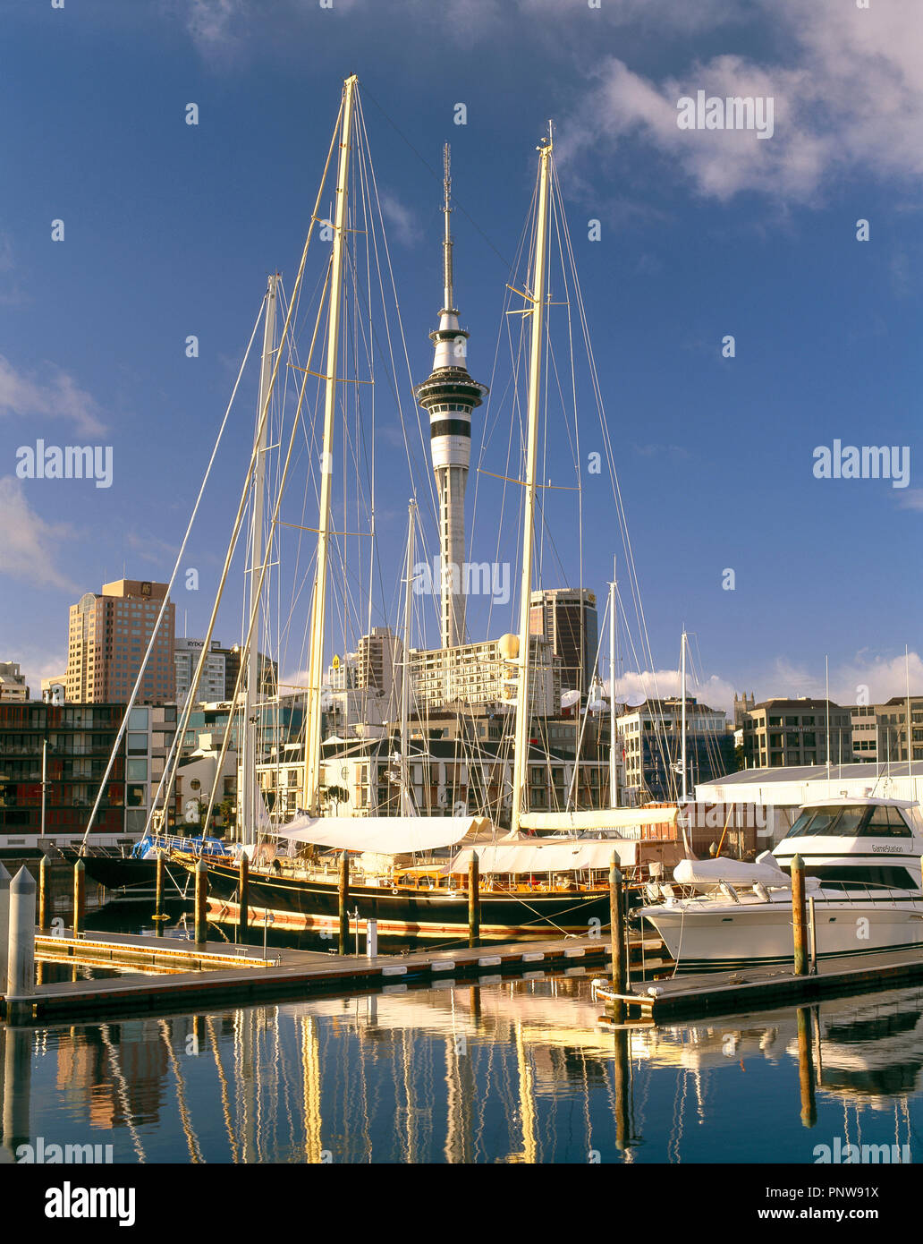 New Zealand. Auckland. City harbour scene with moored boats and Sky Tower. - Stock Image