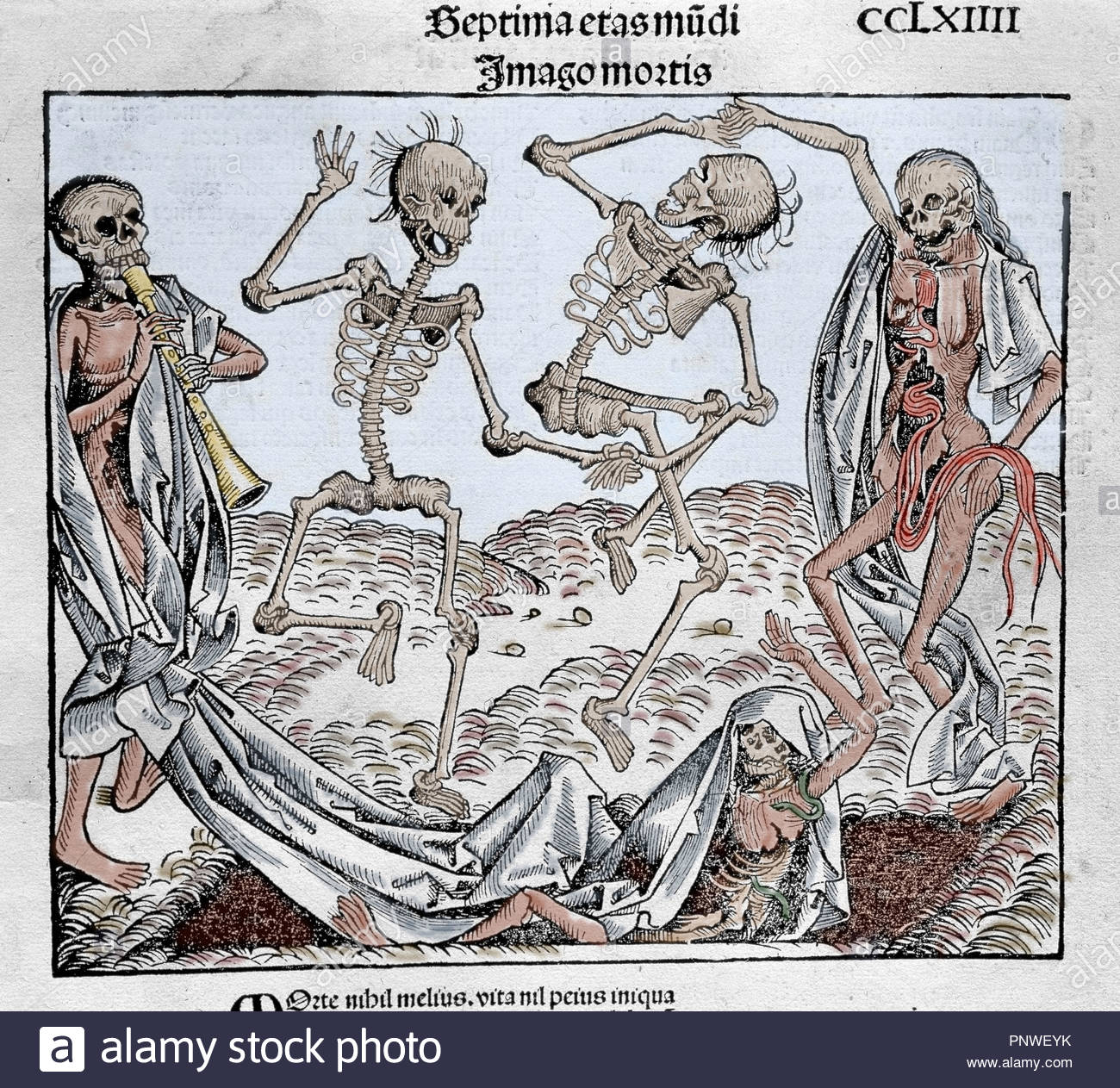 The Dance of Death (1493) by Michael Wolgemut, from the Liber chronicarum by
