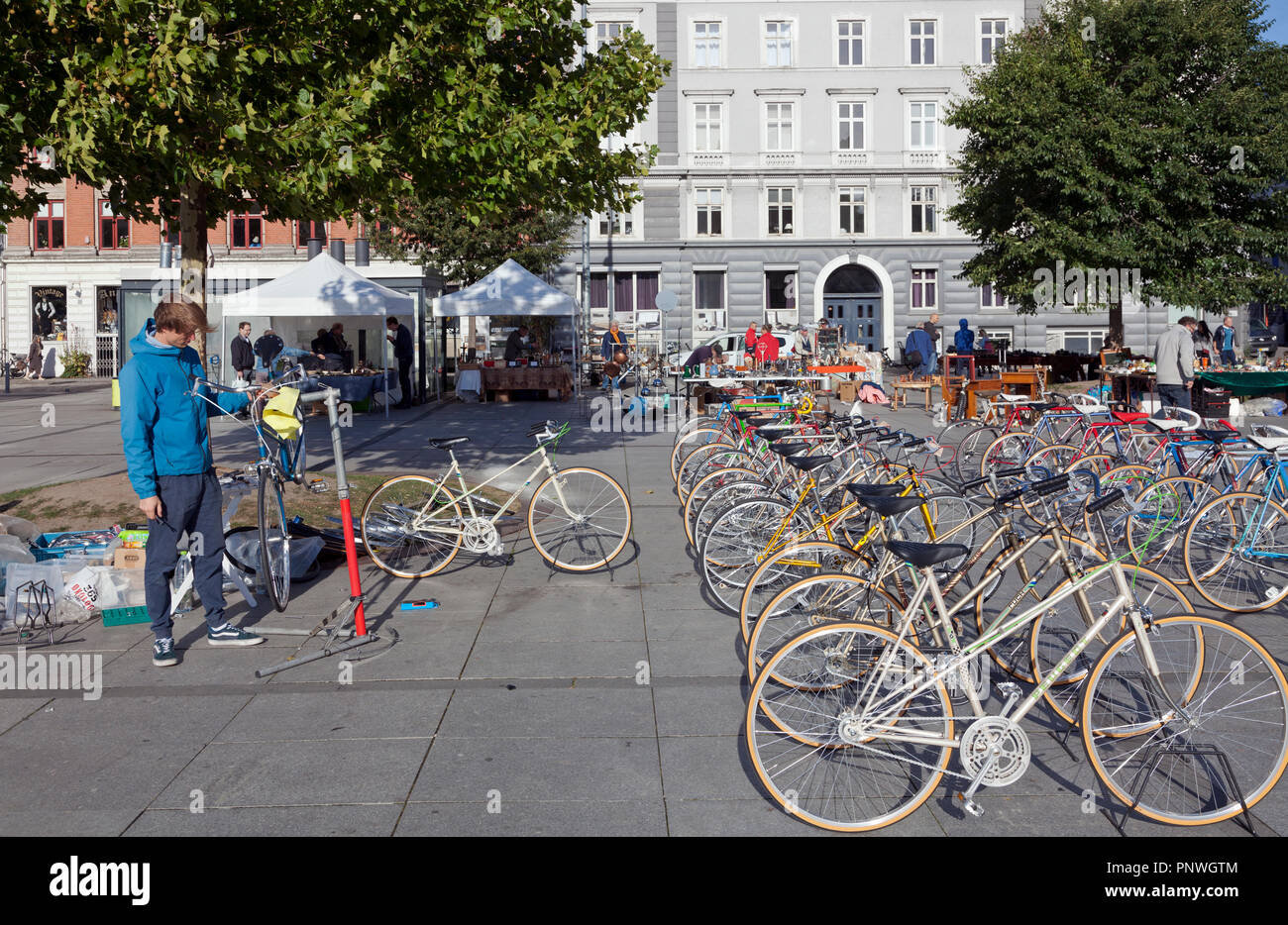 Young bicycle mechanics assembling and selling bicycles at a Saturday flea market on Israels Plads, Israels Square, in sunny autumnal Copenhagen.Stock Photo