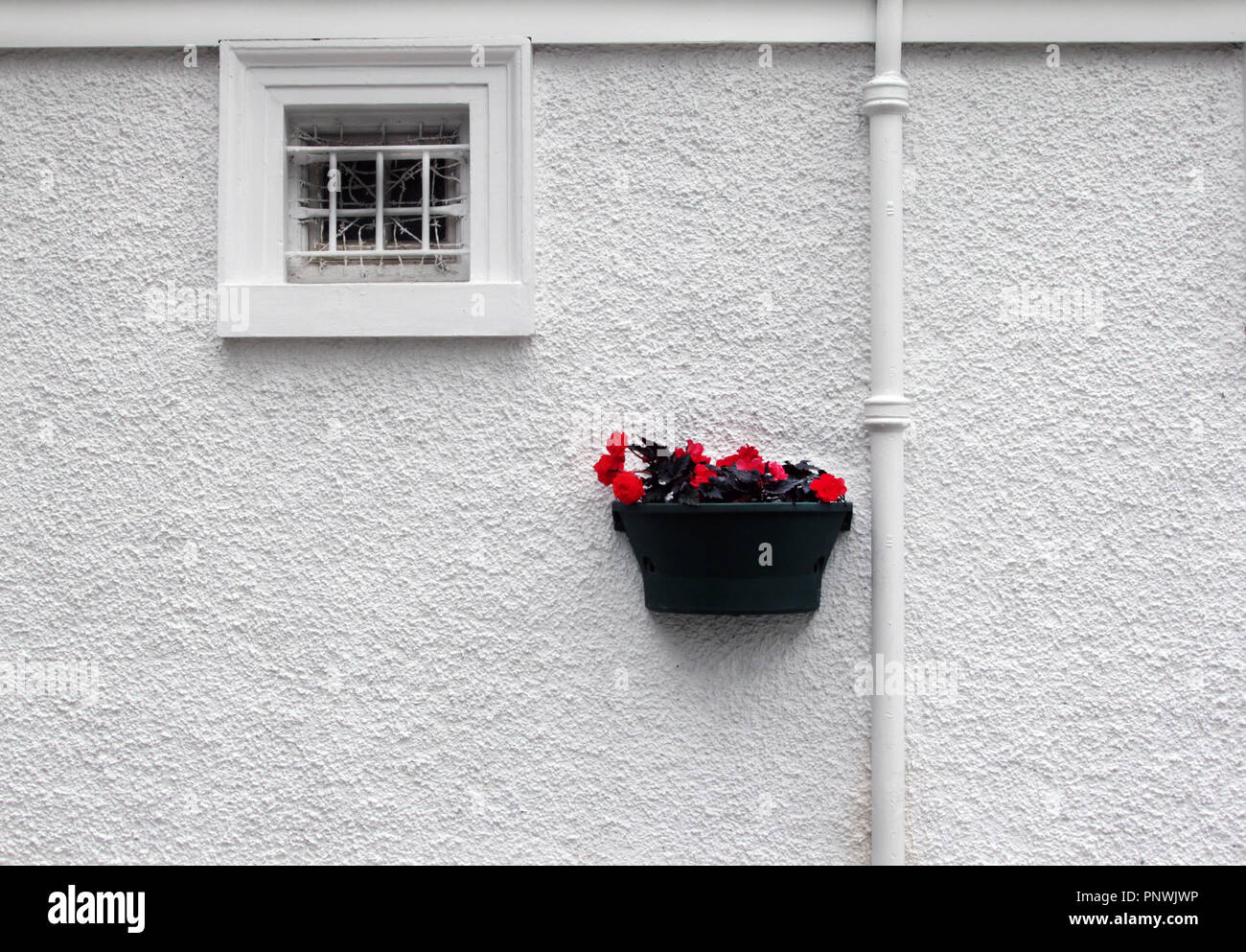 A very white wall with a drainpipe running down it, a small window with a box of bright red flowers! Very arty! - Stock Image